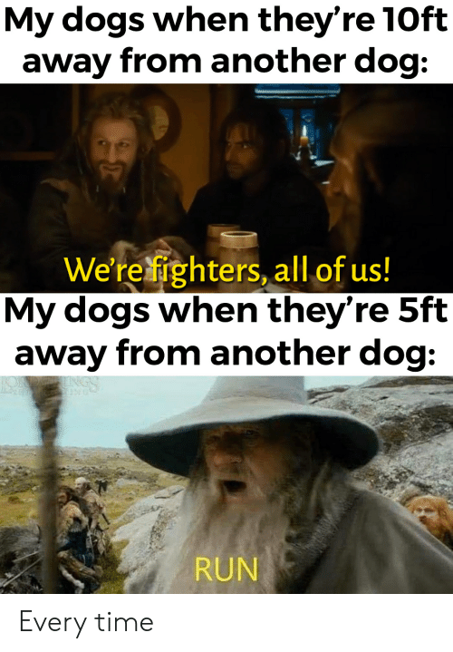 Dogs, Run, and Lord of the Rings: My dogs when they're 10ft  away from another dog:  We're fighters, all of us!  My dogs when they're 5ft  away from another dog:  SENT  RUN Every time