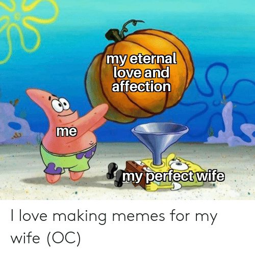 Love, Memes, and Wife: my eternal  love and  affection  me  my perfect wife I love making memes for my wife (OC)