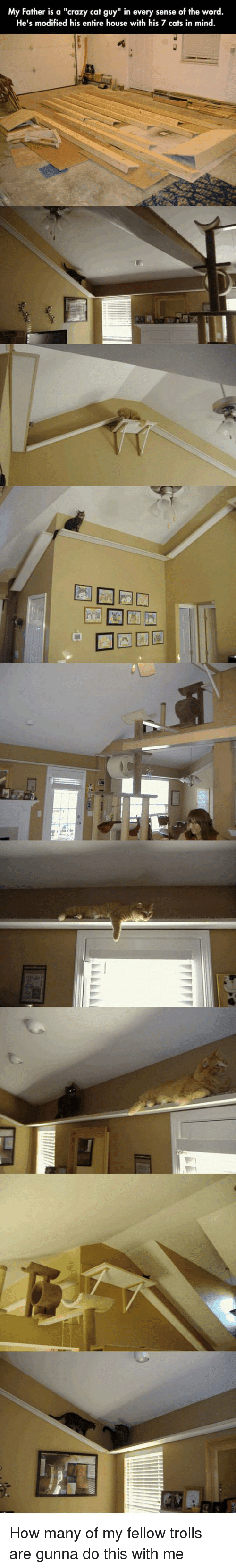 "Cats, Crazy, and House: My Father is a ""crazy cat guy"" in every sense of the word.  He's modified his entire house with his 7 cats in mind How many of my fellow trolls are gunna do this with me"
