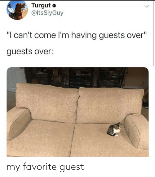 Guest: my favorite guest