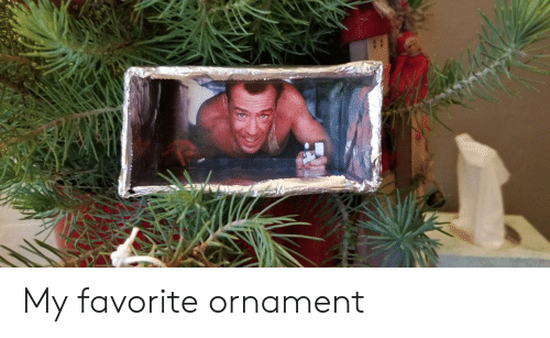 My Favorite, Favorite, and Ornament: My favorite ornament