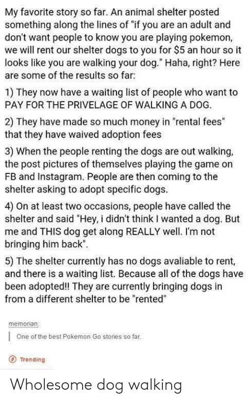 """Dogs, Instagram, and Money: My favorite story so far. An animal shelter posted  something along the lines of """"if you are an adult and  don't want people to know you are playing pokemon,  we will rent our shelter dogs to you for $5 an hour so it  looks like you are walking your dog."""" Haha, right? Here  are some of the results so far  1) They now have a waiting list of people who want to  PAY FOR THE PRIVELAGE OF WALKING A DOG.  2) They have made so much money in """"rental fees""""  that they have waived adoption fees  3) When the people renting the dogs are out walking,  the post pictures of themselves playing the game on  FB and Instagram. People are then coming to the  shelter asking to adopt specific dogs  4) On at least two occasions, people have called the  shelter and said """"Hey, i didn't think I wanted a dog. But  me and THIS dog get along REALLY well. I'm not  bringing him back""""  5) The shelter currently has no dogs avaliable to rent,  and there is a waiting list. Because all of the dogs have  been adopted! They are currently bringing dogs in  from a different shelter to be """"rented""""  memonan  One of the best Pokemon Go stories so far  O Trending Wholesome dog walking"""