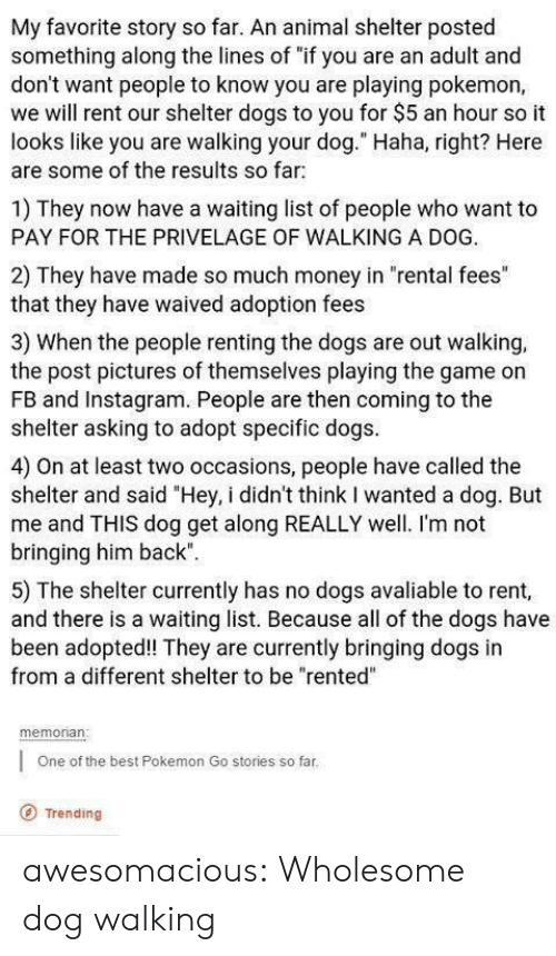 """Dogs, Instagram, and Money: My favorite story so far. An animal shelter posted  something along the lines of """"if you are an adult and  don't want people to know you are playing pokemon,  we will rent our shelter dogs to you for $5 an hour so it  looks like you are walking your dog."""" Haha, right? Here  are some of the results so far  1) They now have a waiting list of people who want to  PAY FOR THE PRIVELAGE OF WALKING A DOG.  2) They have made so much money in """"rental fees""""  that they have waived adoption fees  3) When the people renting the dogs are out walking,  the post pictures of themselves playing the game on  FB and Instagram. People are then coming to the  shelter asking to adopt specific dogs  4) On at least two occasions, people have called the  shelter and said """"Hey, i didn't think I wanted a dog. But  me and THIS dog get along REALLY well. I'm not  bringing him back""""  5) The shelter currently has no dogs avaliable to rent,  and there is a waiting list. Because all of the dogs have  been adopted! They are currently bringing dogs in  from a different shelter to be """"rented""""  memonan  One of the best Pokemon Go stories so far  O Trending awesomacious:  Wholesome dog walking"""