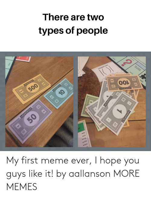 My First: My first meme ever, I hope you guys like it! by aallanson MORE MEMES