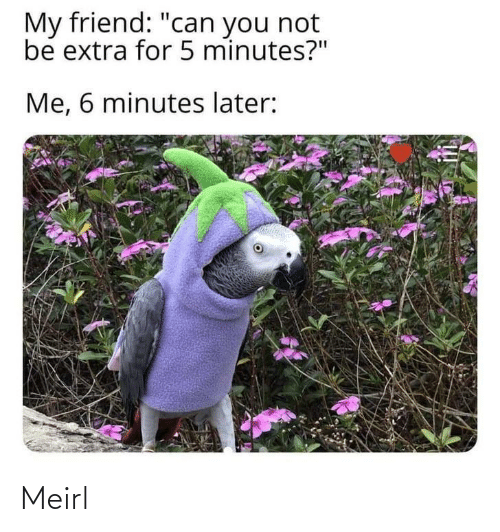 """MeIRL, Can, and Friend: My friend: """"can you not  be extra for 5 minutes?""""  Me, 6 minutes later: Meirl"""