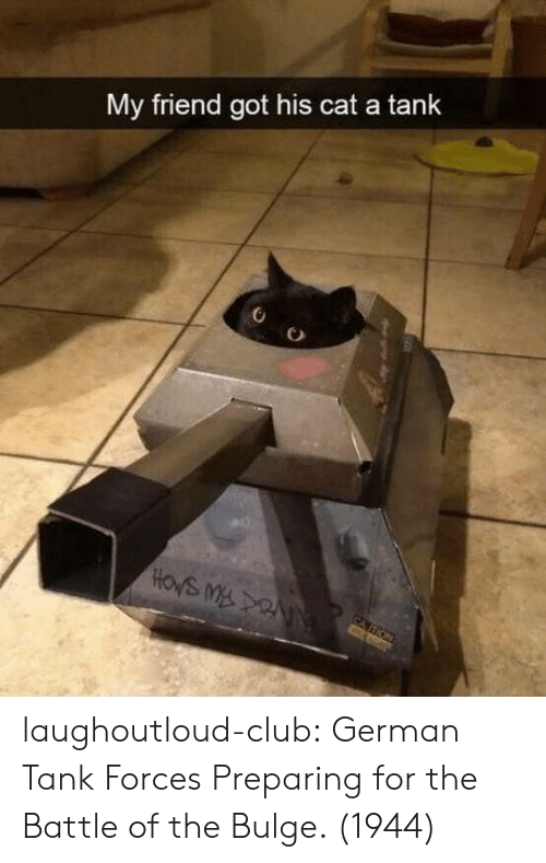 Club, Tumblr, and Blog: My friend got his cat a tank  HOWS M NN  CATION laughoutloud-club:  German Tank Forces Preparing for the Battle of the Bulge. (1944)