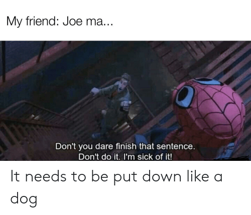 Dank Memes, Sick, and Dog: My friend: Joe ma...  Don't you dare finish that sentence.  Don't do it. I'm sick of it! It needs to be put down like a dog