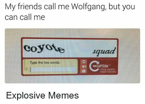 Friends, Memes, and Squad: My friends call me Wolfgang, but you  can call me  coyote squad  decentbirthday  Type the two words:  Re CAPTCHA  stop spam Explosive Memes