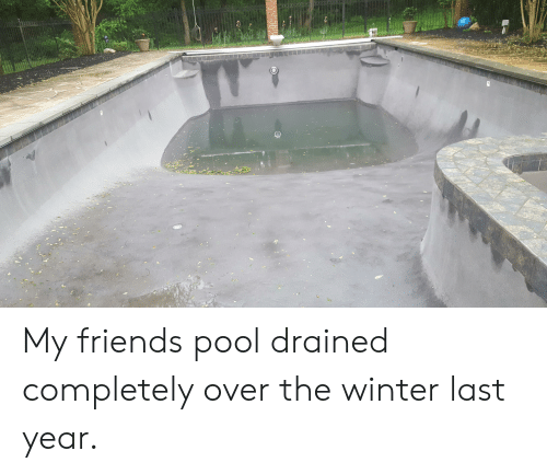 Friends, Winter, and Pool: My friends pool drained completely over the winter last year.