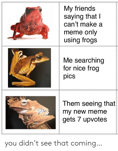 Friends, Meme, and Nice: My friends  saying that I  can't make a  meme only  using frogs  Me searching  for nice frog  pics  Them seeing that  my new meme  gets 7 upvotes you didn't see that coming…