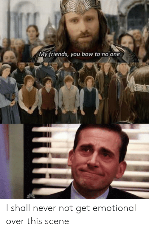 Friends, Lord of the Rings, and Never: My friends, you bow to no one I shall never not get emotional over this scene