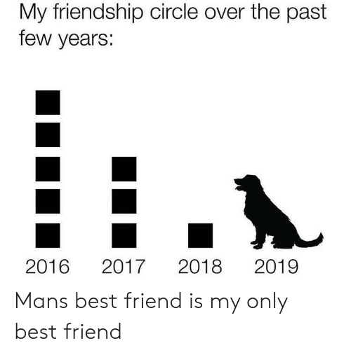 best friend: My friendship circle over the past  few years:  2019  2016  2018  2017 Mans best friend is my only best friend