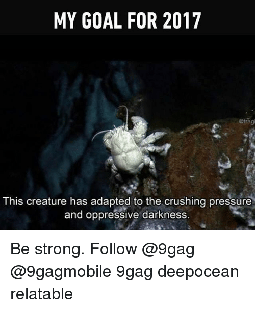 the crush: MY GOAL FOR 2017  atragi  This creature has adapted to the crushing pressure  and oppressive darkness. Be strong. Follow @9gag @9gagmobile 9gag deepocean relatable