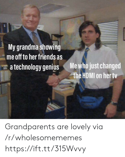 Friends, Grandma, and Genius: My grandma showing  me off to her friends as  Me who just changed  the HDMI on her tv  a technology genius Grandparents are lovely via /r/wholesomememes https://ift.tt/315Wvvy