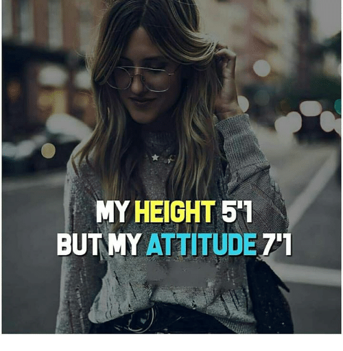 Memes, Attitude, and 🤖: MY HEIGHT 5'1  BUT MY ATTITUDE 71