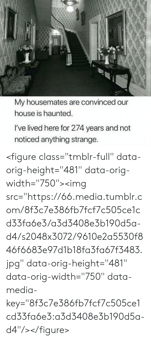 "Lived: My housemates are convinced our  house is haunted.  I've lived here for 274 years and not  noticed anything strange. <figure class=""tmblr-full"" data-orig-height=""481"" data-orig-width=""750""><img src=""https://66.media.tumblr.com/8f3c7e386fb7fcf7c505ce1cd33fa6e3/a3d3408e3b190d5a-d4/s2048x3072/9610e2a5530f846f6683e97d1b18fa3fa67f3483.jpg"" data-orig-height=""481"" data-orig-width=""750"" data-media-key=""8f3c7e386fb7fcf7c505ce1cd33fa6e3:a3d3408e3b190d5a-d4""/></figure>"