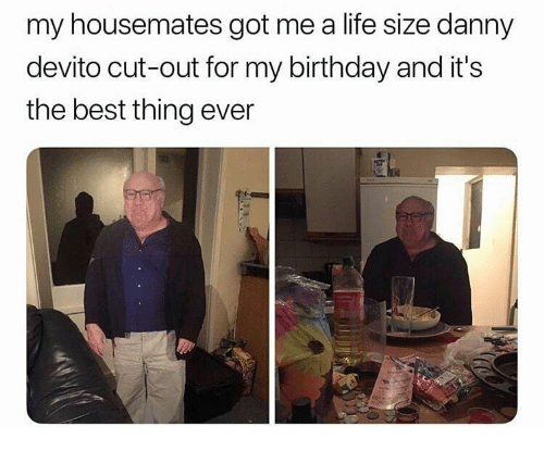 life size: my housemates got me a life size danny  devito cut-out for my birthday and it's  the best thing ever