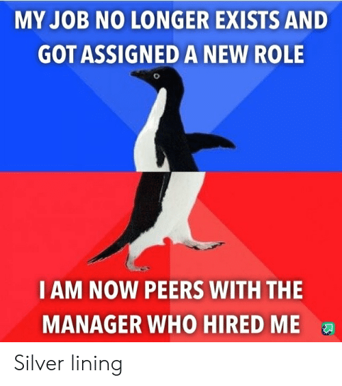 iam: MY JOB NO LONGER EXISTS AND  GOT ASSIGNED A NEW ROLE  IAM NOW PEERS WITH THE  MANAGER WHO HIRED ME Silver lining