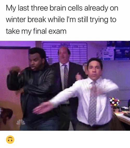 final exam: My last three brain cells already on  winter break while l'm still trying to  take my final exam 🙃