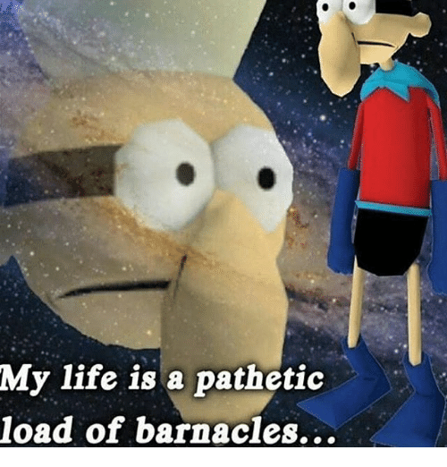 Patheticness: My life is a pathetic  load of barnacles...
