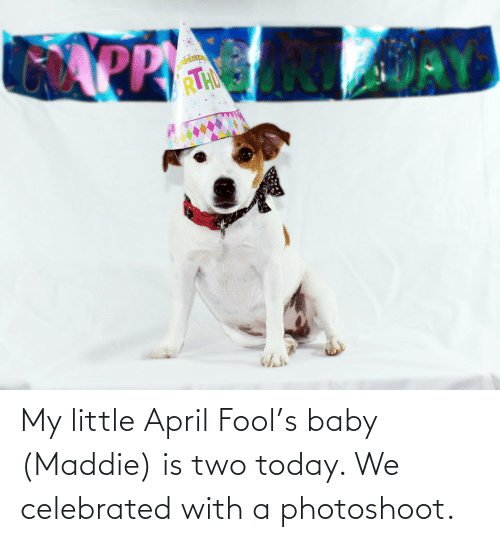 Celebrated: My little April Fool's baby (Maddie) is two today. We celebrated with a photoshoot.