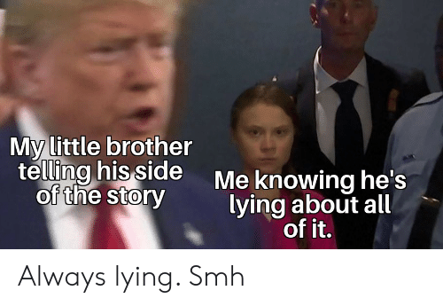 Reddit, Smh, and Little Brother: My little brother  telling his side  of the story  Me knowing he's  lying about all  of it. Always lying. Smh