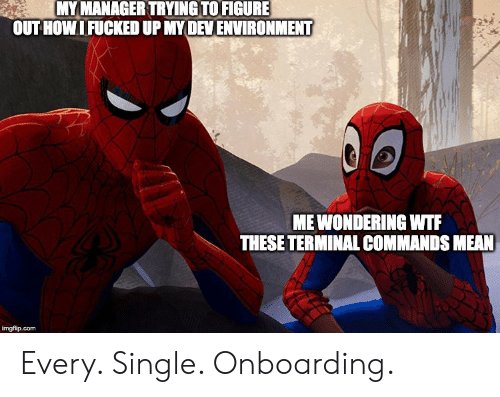 terminal: MY MANAGER TRYING TO FIGURE  OUTHOWIFUCKED UP MYDEVENVIRONMENT  MEWONDERING WTF  THESE TERMINAL COMMANDS MEAN  imgflip.com Every. Single. Onboarding.