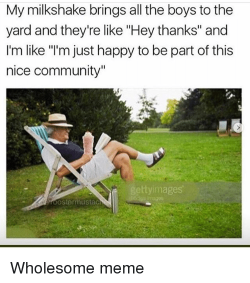"the yards: My milkshake brings all the boys to the  yard and they're like ""Hey thanks"" and  I'm like ""'m just happy to be part of this  nice community""  ttyimages Wholesome meme"