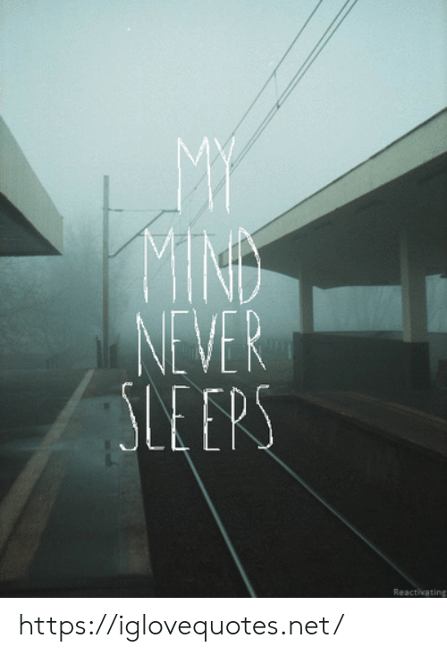 Mind, Never, and Net: MY  MIND  NEVER  LE EPS  Reactivating https://iglovequotes.net/