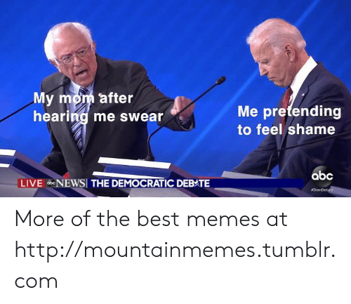 Abc, Memes, and Tumblr: My mom after  hearing me swear  Me pretending  to feel shame  abc  LIVE bNEWSI THE DEMOCRATIC DEBATE  More of the best memes at http://mountainmemes.tumblr.com