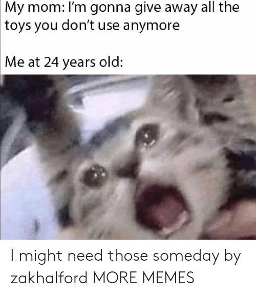 Dank, Memes, and Target: My mom: I'm gonna give away all the  toys you don't use anymore  Me at 24 years old: I might need those someday by zakhalford MORE MEMES