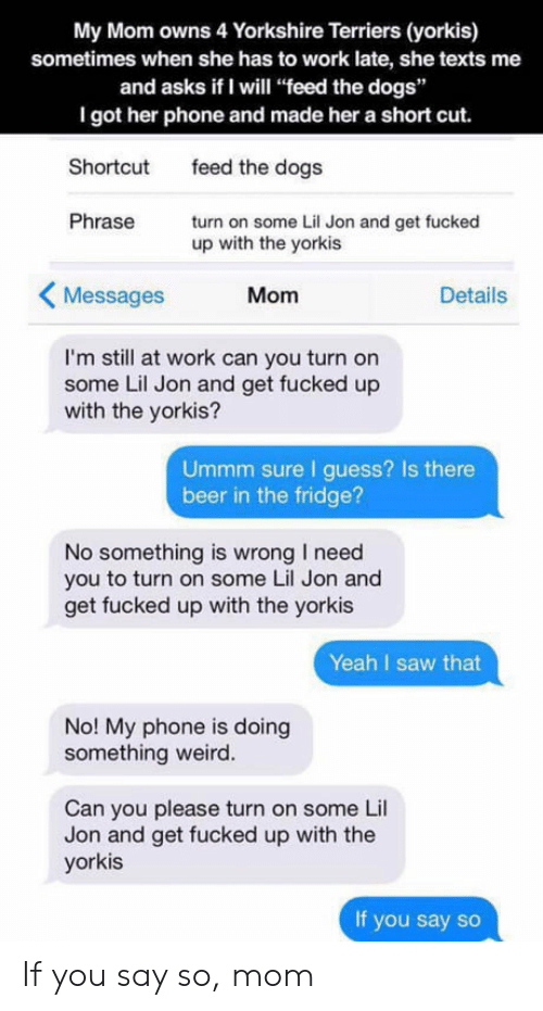 """Beer, Dogs, and Phone: My Mom owns 4 Yorkshire Terriers (yorkis)  sometimes when she has to work late, she texts me  and asks if I will """"feed the dogs""""  I got her phone and made her a short cut.  Shortcut  Phrase  feed the dogs  turn on some Lil Jon and get fucked  up with the yorkis  Messages  Mom  Details  I'm still at work can you turn on  some Lil Jon and get fucked up  with the yorkis?  Ummm sure I guess? Is there  beer in the fridge?  No something is wrong I need  you to turn on some Lil Jon and  get fucked up with the yorkis  Yeah I saw that  No! My phone is doing  something weird.  Can you please turn on some Lil  Jon and get fucked up with the  yorkis  If you say so If you say so, mom"""