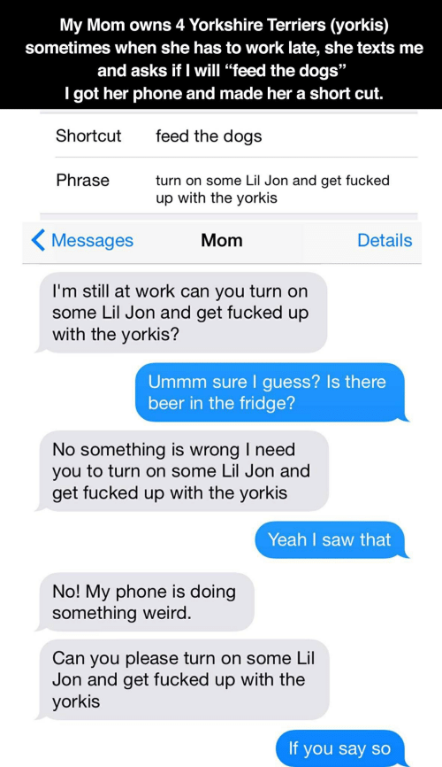 "Beer, Dogs, and Phone: My Mom owns 4 Yorkshire Terriers (yorkis)  sometimes when she has to work late, she texts me  and asks if I will ""feed the dogs""  I got her phone and made her a short cut.  feed the dogs  Shortcut  Phrase  turn on some Lil Jon and get fucked  up with the yorkis  Messages  Mom  Details  I'm still at work can you turn on  some Lil Jon and get fucked up  with the yorkis?  Ummm sure I guess? Is there  beer in the fridge?  No something is wrong I need  you to turn on some Lil Jon and  get fucked up with the yorkis  Yeah I saw that  No! My phone is doing  something weird.  Can you please turn on some Lil  Jon and get fucked up with the  yorkis  If you say so"