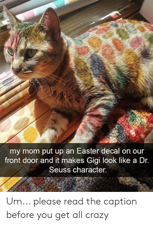 Dr. Seuss: my mom put up an Easter decal on our  front door and it makes Gigi look like a Dr.  Seuss character. Um... please read the caption before you get all crazy