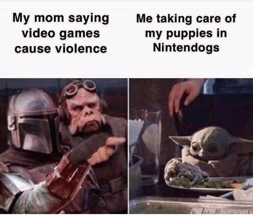 Care Of: My mom saying  video games  cause violence  Me taking care of  my puppies in  Nintendogs
