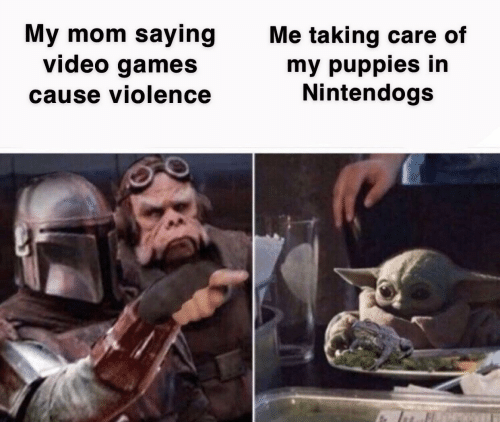 Care Of: My mom saying  video games  Me taking care of  my puppies in  Nintendogs  cause violence