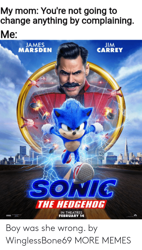Not Going: My mom: You're not going to  change anything by complaining  Ме:  JIM  CARREY  JAMES  MARSDEN  PEE  70  SONIC  THE HEDGEHOG  IN THEATRES  FEBRUARY 14 Boy was she wrong. by WinglessBone69 MORE MEMES