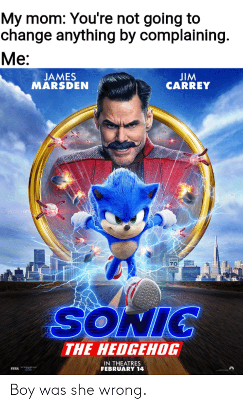 february: My mom: You're not going to  change anything by complaining  Ме:  JIM  CARREY  JAMES  MARSDEN  PEE  70  SONIC  THE HEDGEHOG  IN THEATRES  FEBRUARY 14 Boy was she wrong.