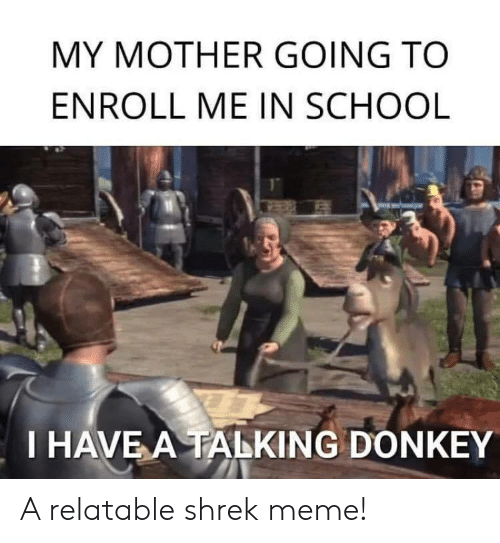 Donkey: MY MOTHER GOING TO  ENROLL ME IN SCHOOL  I HAVE A TALKING DONKEY A relatable shrek meme!