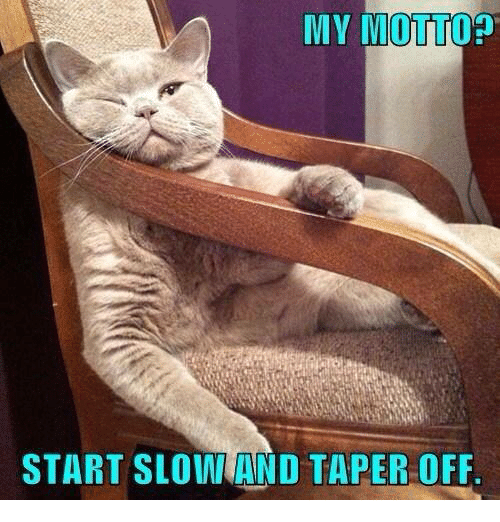 taper: MY MOTTOp  START SLOINTAND TAPER OFF.