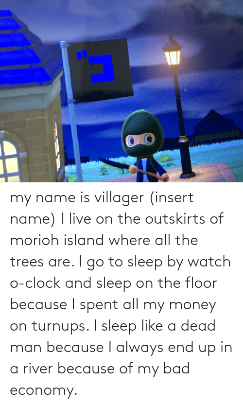 go to sleep: my name is villager (insert name) I live on the outskirts of morioh island where all the trees are. I go to sleep by watch o-clock and sleep on the floor because I spent all my money on turnups. I sleep like a dead man because I always end up in a river because of my bad economy.