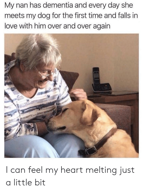 just a little bit: My nan has dementia and every day she  meets my dog for the first time and falls in  love with him over and over again I can feel my heart melting just a little bit
