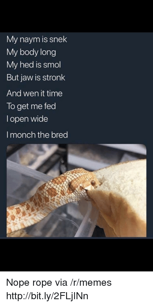 Wen: My naym is snek  My body long  My hed is smol  But jaw is stronk  And wen it time  To get me fed  l open wide  I monch the bred Nope rope via /r/memes http://bit.ly/2FLjINn