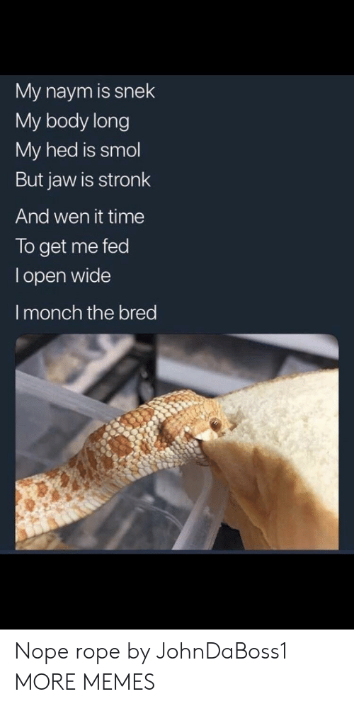 Wen: My naym is snek  My body long  My hed is smol  But jaw is stronk  And wen it time  To get me fed  l open wide  I monch the bred Nope rope by JohnDaBoss1 MORE MEMES