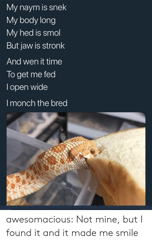 Tumblr, Blog, and Smile: My naym is snek  My body long  My hed is smol  But jaw is stronk  And wen it time  To get me fed  l open wide  I monch the bred awesomacious:  Not mine, but I found it and it made me smile