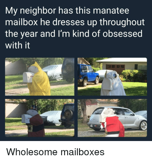 mailboxes: My neighbor has this manatee  mailbox he dresses up throughout  the year and I'm kind of obsessed  with it <p>Wholesome mailboxes</p>