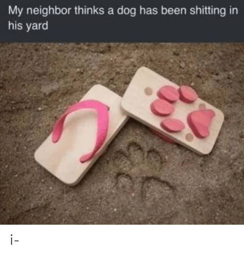 Been, Dog, and Yard: My neighbor thinks a dog has been shitting in  his yard i-
