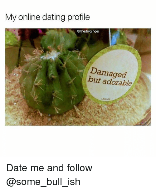 Online dating: My online dating profile  @thedryginger  Damaged  but adorable  NSSAD Date me and follow @some_bull_ish