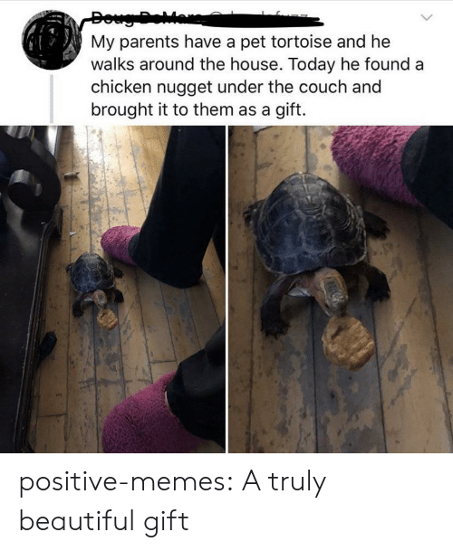 Beautiful, Memes, and Parents: My parents have a pet tortoise and he  walks around the house. Today he found  chicken nugget under the couch and  brought it to them as a gift. positive-memes:  A truly beautiful gift