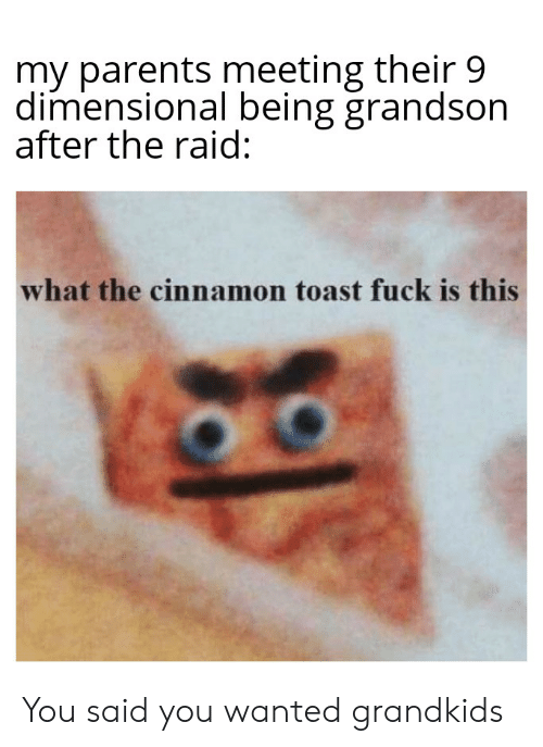 Parents, Fuck, and Dank Memes: my parents meeting their 9  dimensional being grandson  after the raid:  what the cinnamon toast fuck is this You said you wanted grandkids